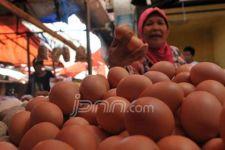 Imbas PPKM, Harga Telur Ayam Ras Anjlok, ASN Dapat Instruksi Khusus - JPNN.com Jatim