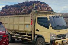 Soal Penyerobotan Lahan 200 Petani Sawit di Riau, Bareskrim Periksa 37 Orang Saksi - JPNN.com