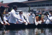Komite II DPD RI Tinjau Tambak Udang Vaname di Aceh Timur - JPNN.com