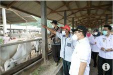 Gus Halim Dorong BUMDes Kreatif Kembangkan Usaha - JPNN.com