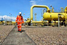 Transformasi Subholding Bidik Pemanfaatan Gas Bumi di Masa Transisi Energi - JPNN.com