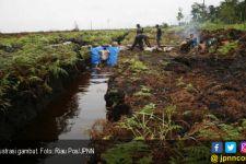 Land Swap Belum Jelas, Pengusaha Bersiap Impor - JPNN.com