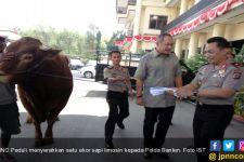 MNC Peduli Serahkan Sapi Limosin ke Polda Banten - JPNN.com