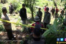 Ladang Ganja Siap Panen Ditemukan di Empat Lawang - JPNN.com