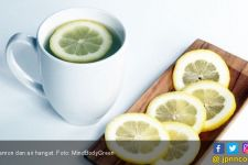 Pengin Menurunkan Berat Badan? 4 Resep Teh Lemon Ini Patut Dicoba - JPNN.com