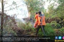 6 Provinsi Tetapkan Siaga Darurat Karhutla Jelang Puncak Musim Kemarau - JPNN.com