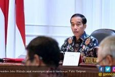 Jokowi Puji Titik Kebakaran Hutan yang Menurun - JPNN.com