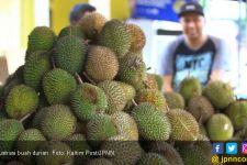 Durian Masuk Daftar Makanan Menjijikkan di Swedia, Mohon Jangan Marah! - JPNN.com