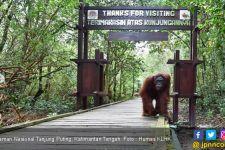 KLHK Harapkan Taman Nasional Bisa Jadi Badan Layanan Umum - JPNN.com