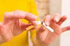 BPOM Beri Izin Produk Tembakau Alternatif Dipasarkan, Indonesia Perlu Kajian Ilmiah - JPNN.com