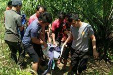 Ali Nurdin Tewas Diserang Babi Hutan di Kebun Sawit, Tragis! - JPNN.com