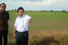KUR Pertanian Demi Mewujudkan Lumbung Pangan Indonesia - JPNN.com