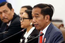 Hadapi Corona, Presiden Jokowi Pasang Target Bulanan, Mei, Juni, Juli - JPNN.com