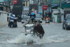 Banjir Besar di Kalsel, Walhi Singgung Degradasi Ekologis - JPNN.com