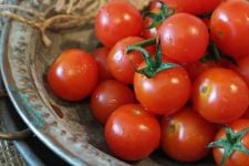 Tidak Hanya Buahnya, Ampas Tomat Ternyata Mengandung Manfaat yang Baik untuk Kulit - JPNN.com