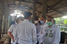 Kementan Antisipasi Lonjakan Permintaan Daging Sapi Jelang HBKN - JPNN.com