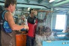 Tiga Produk Perikanan Tembus Pasar Ekspor, Berbagai Negara Ini Jadi Peminat - JPNN.com