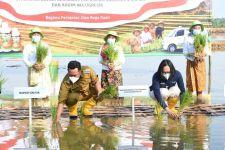 Petrokimia Gresik Uji Coba Pupuk Phonska OCA di 15 Kecamatan - JPNN.com