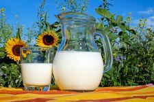 Benarkah Susu Bisa Meningkatkan Imun Pasien Covid-19? Ini Penjelasan Ahli - JPNN.com