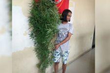 Lihat, Suheri Kini Berpose dengan Pohon Ganja Miliknya di Kantor Polisi - JPNN.com