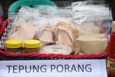 Perhutani dan RPN Sepakat Kembangkan Tanaman Porang - JPNN.com