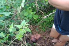Misnawi Mau Buang Air Kecil di Semak-semak, Mendadak Terdengar Suara, Geger - JPNN.com