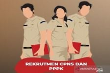 Seleksi CPNS 2021 Sudah Dibuka, Ada 689.623 Formasi yang Diperebutkan - JPNN.com