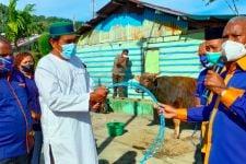 Gubernur Papua Barat dan Partai Nasdem Sumbang 80 Sapi Kurban untuk Warga Muslim - JPNN.com