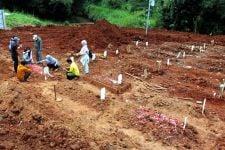 Mulyanto: Pemerintah Jangan Main-main soal Data Kematian Covid-19 - JPNN.com