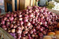 Berikut Daftar Harga Sayuran dan Bumbu Dapur di Jember Jelang Musim Hujan - JPNN.com Jatim