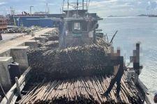 Bea Cukai Batam Menggagalkan Penyelundupan 10.810 Batang Kayu Teki - JPNN.com