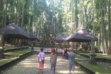 Objek Wisata Sangeh Masih Sepi Kunjungan, Dulu Ribuan Turis Kini Puluhan - JPNN.com Bali