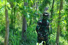 Prajurit TNI Sergap Musuh di Hutan Pulaki Bali, Lihat Aksinya - JPNN.com Bali
