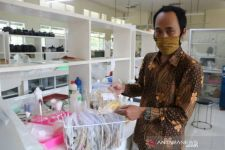 Peneliti Unej Dorong Penciptaan Padi Baru Berbasis Plasma Nutfah Asli Indonesia - JPNN.com Jatim