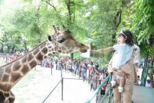 Libur Lebaran, KBS Ramai Pengunjung, Parkir Bisa di TIJ Joyoboyo - JPNN.com Jatim