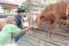 Wabah Antraks di Sidomulyo, Penjualan Sapi Pasar Tulungagung Tetap Ramai - JPNN.com Jatim