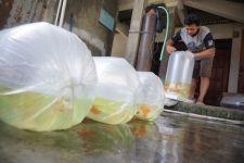Pedagang Ikan Hias di Tulungagung Menjerit Gara-gara Cari Oksigen Sulit - JPNN.com Jatim
