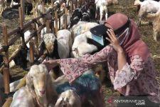 Penjualan Hewan Kurban di Surabaya Manfaatkan Teknologi VR, Lihat - JPNN.com Jatim