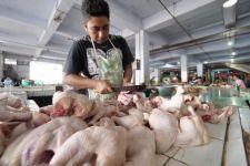 Gegara Daging Ayam Ras, Jember Deflasi 0,05 Persen - JPNN.com Jatim