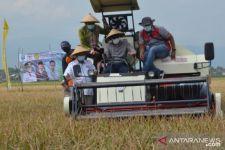 Petani Probolinggo Dikenalkan Teknologi Pertanian, Kini Panen 5 Padi Varietas Baru - JPNN.com Jatim
