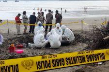 Tim Forensik FKH Unair Tidak Temukan Tanda Kekerasan pada Bangkai Paus di Pesisir Tulungagung - JPNN.com Jatim