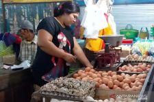 Pasokan Tak Stabil, Harga Telur dan Daging Ayam Ras di Jember Fluktuatif - JPNN.com Jatim