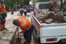Belasan Pot Bunga di Jalan Ijen Malang Rusak, DLH: Pelakunya ODGJ - JPNN.com Jatim