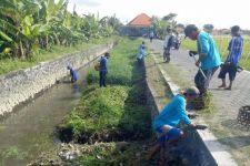 Dinas PUPR Kerahkan Pasukan Biru Prokasih Bersihkan Saluran Air Jelang Musim Hujan - JPNN.com Bali