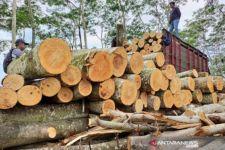 Perhutani Jatim: Penjualan Log Kayu Nasional Cenderung Meningkat Selama Pandemi - JPNN.com Jatim