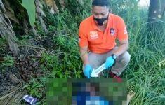 Ada Mayat Wanita Ditemukan di Pinggir Jalan Seribanding, Kondisi Mengerikan - JPNN.com