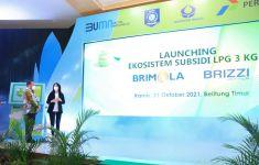 BRI Kenalkan Brizzi LPG Card dan New BRIMOLA, Cara Mudah Bayar Gas Elpiji 3 Kg - JPNN.com