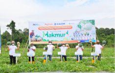 Program Makmur Pupuk Kaltim Tingkatkan Produktivitas Melon & Semangka di Kutai Kartanegara - JPNN.com