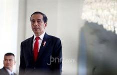 Presiden Jokowi: Yang Mulia, Kita Ingin Melihat Kawasan Damai dan Stabil - JPNN.com