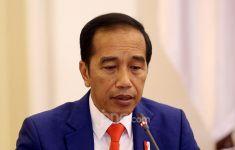 Jokowi Sebut 2 Kunci Menanggulangi Pandemi - JPNN.com